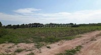 Horseshoe Point Land For Sale in  East Pattaya