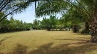 Huay Yai Land For Sale in  East Pattaya