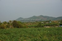 Khao Mai Kaeo Land For Sale in  East Pattaya