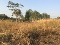 Land at Pong Land For Sale in  East Pattaya