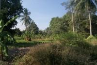 Takien Tia Land For Sale in  East Pattaya